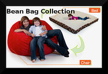 bean bag with a bed